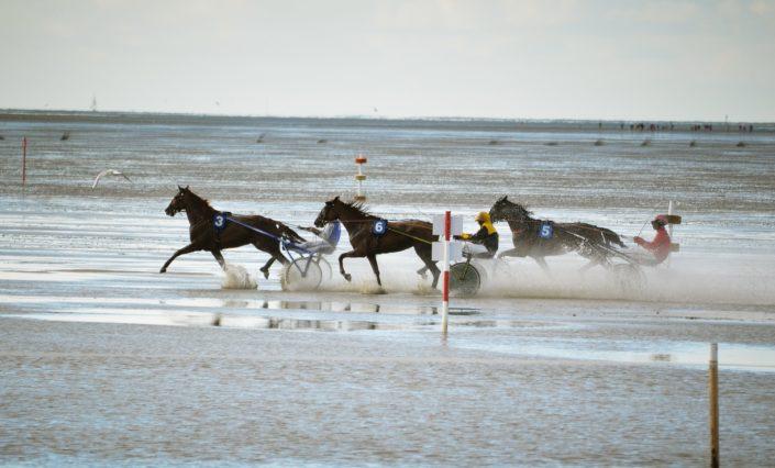 Duhner Wattrennen Wattenmeer Cuxhaven